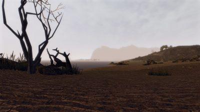 All'alba la spiaggia di Ardea mostra il meglio di sé