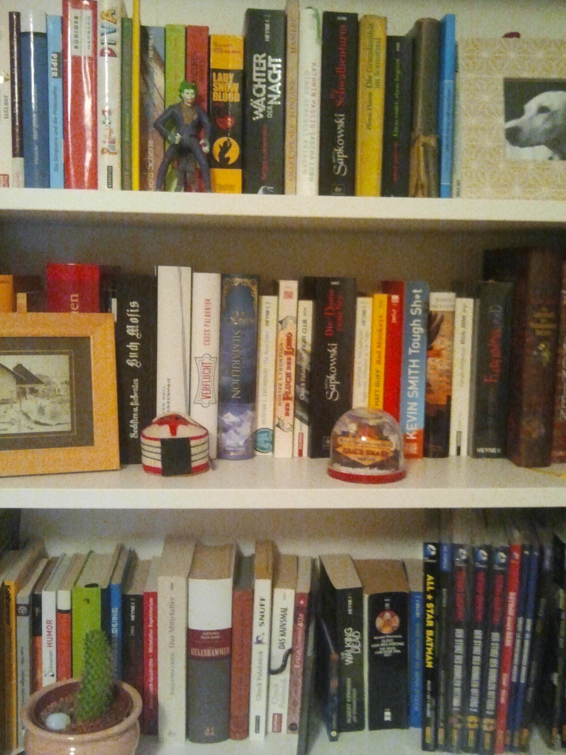 I libri consigliati da HerrFenrisWolf: <br />Hunter S. Thompson - Paura e disgusto a Las Vegas, <br />Chuck Palahniuk - Survivor, <br />Walter Moers - Rumo e i prodigi nell'oscurità.