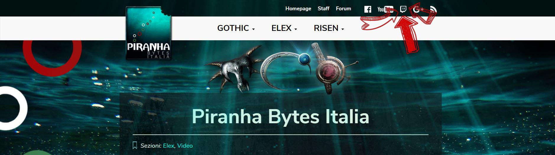 Piranhas bite